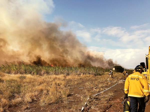 Maui firefighters battle a blaze about 2 miles uphill on the Kihei side of Pulehu Road on Friday afternoon. The fire involving fallow sugar cane fields burned 14 acres. -- Maui Fire Department photo
