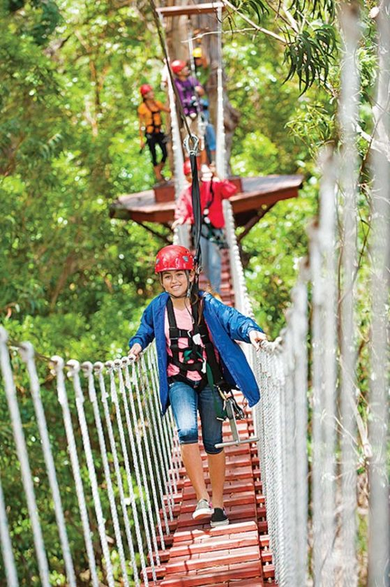and walk on suspension bridges to enter and exit the zipline towers. -- Pi'iholo Ranch Zipline