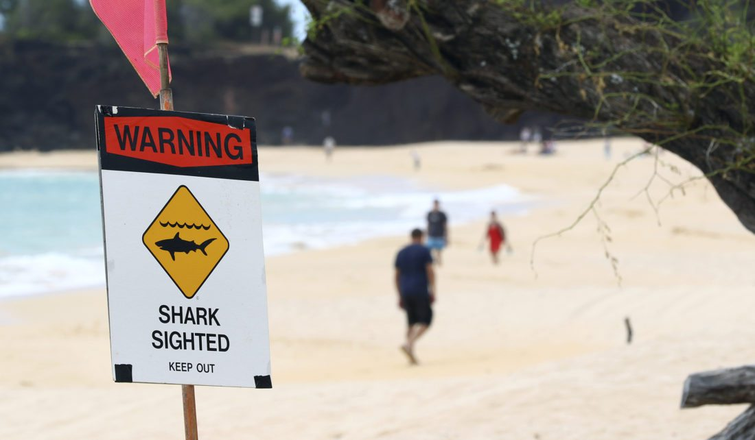 Big Beach and Little Beach closed temporarily Thursday after a 7-foot Galapagos shark snatched fish from two fishermen's dive float. • The Maui News / CHRIS SUGIDONO photo