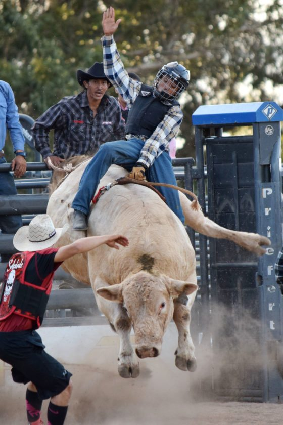 FIRST PHOTO: Micah Ramos competes in high school bull riding during the Hawaii High School Rodeo Association Maui District shows last weekend at Kaonoulu Ranch. • EMY FERGUSON photo