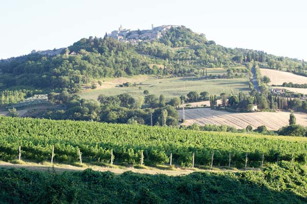 The village of  Todi, Italy, in the Umbrian countryside -- Photo via AP