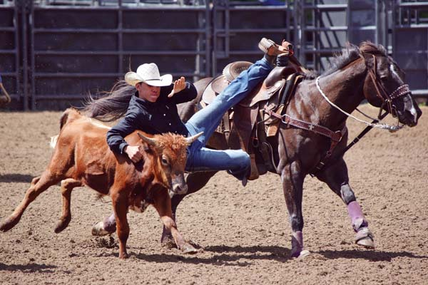 Isaiah Naauao-Asing heads to a time of 8.98 seconds in high school steer wrestling during Sunday's Hawaii State Rodeo District competition at Kaonoulu Ranch in Kula. Naauao-Asing was the only competitor in the category. EMY FERGUSON photo
