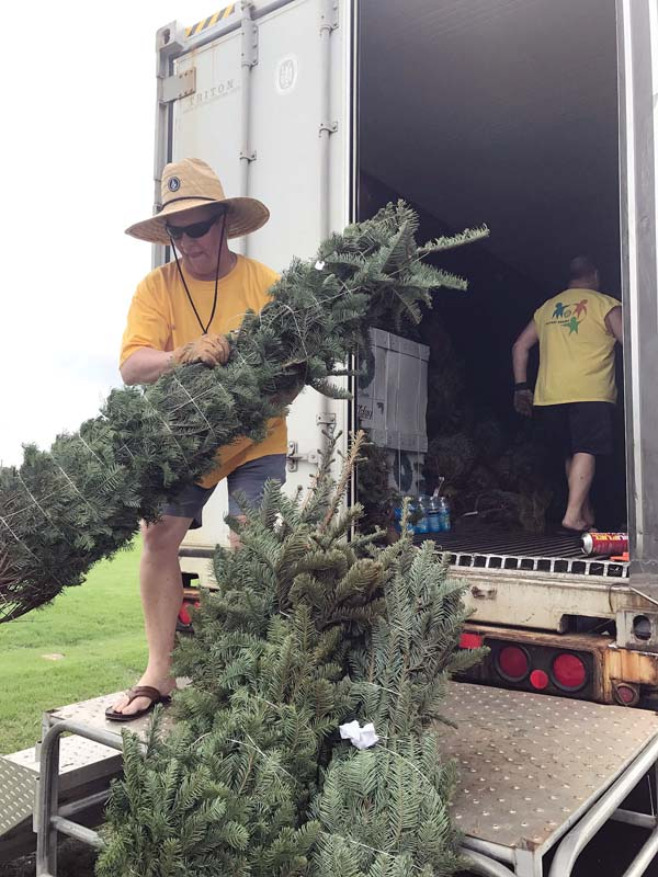 Skeeter Stebbins (in hat) and Chuck Dicker of the Rotary Club of Lahaina Sunrise unload trees from a refrigerated container to sell Thursday at the Lahaina Cannery Mall. Despite reports of tree shortages, the Lahaina club has brought in its normal amount of 500 trees this year. King's Cathedral Maui in Kahului, which has been selling trees for 35 years, will not be selling them this year. THEO MORRISON photo