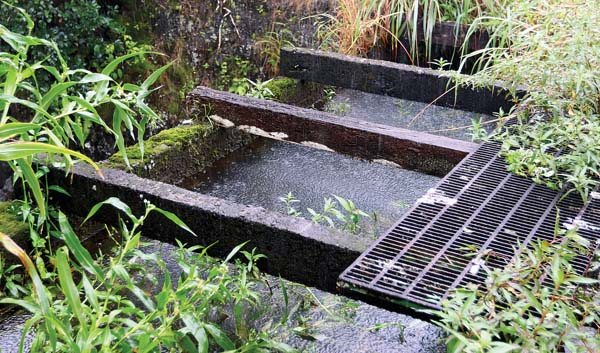 Opponents of Alexander & Baldwin have questioned the maintenance of its East Maui Irrigation Co. ditch system, which includes the Koolau Ditch (pictured). The EMI ditch system was originally constructed in phases from the 1870s to 1923. EMI is a subsidiary of A&B. - The Maui News / CHRIS SUGIDONO photo