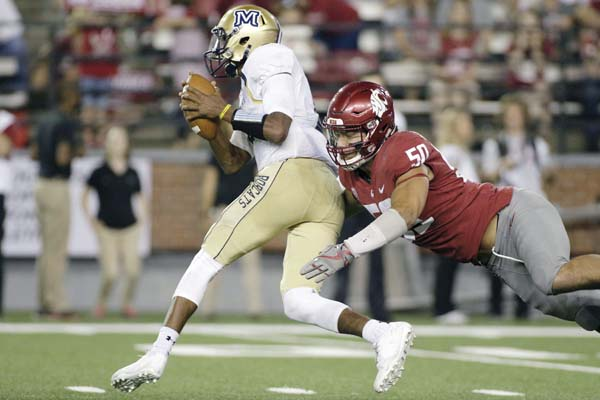 Washington State's Hercules Mataafa tries to bring down Montana State quarterback Chris Murray during the Cougars' 31-0 victory over the Bobcats on Sept. 2. Mataafa finished the season with 21.5 tackles for loss, including 9.5 sacks, both tops in the Pac-12. AP file photo