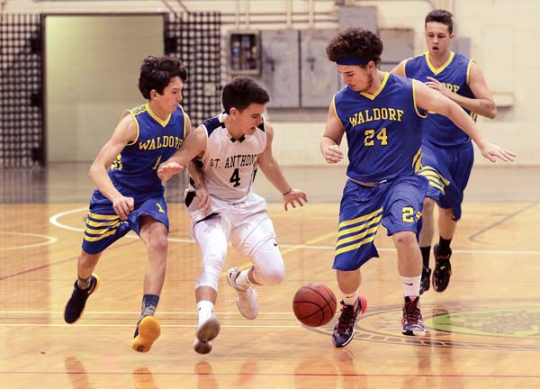 St. Anthony's Bubba Chuckas loses control of the ball next to Haleakala Waldorf's Sean Conmy and Antonio Greco in the second quarter.  - The Maui News / CHRIS SUGIDONO photo