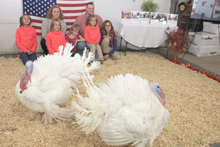 -Messenger photo by Darcy Dougherty Maulsby Sac County turkey producers Chris and Nicole Domino posed Nov. 18 on their farm with their five daughters — Adrian, 13; Brianna, 10; Marissa, 8; Addison, 7; and Megan, 6 — who helped raise the two male national Thanksgiving turkeys that were presented to and pardoned by President Barack Obama.