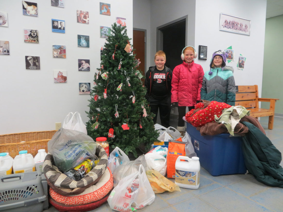 the fort dodge community school district collected donations for. Cars Review. Best American Auto & Cars Review