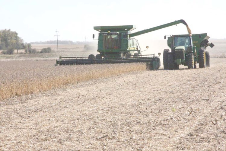 -Messenger file photo Although U.S. farmers harvested their third consecutive record yield last fall, demand is also at a record high. According to USDA's Jan. 12 stocks report, ending stocks on the huge supply is starting to come down, which has spurred the market's future prices upward.