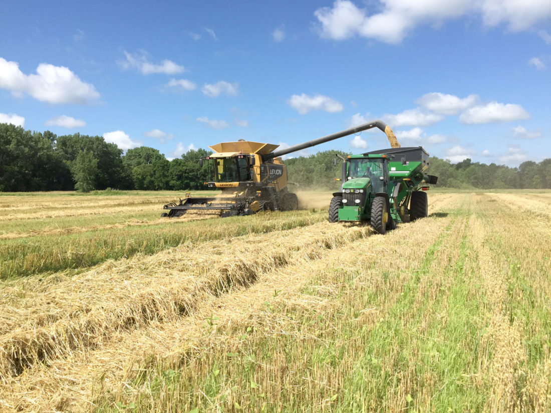 -Submitted photo  Oat harvest takes place on Darren Fehr's farm. The food-grade oats are grown for Grain Millers in St. Ansgar and are part of Scatterseed Farm's three-crop rotation.