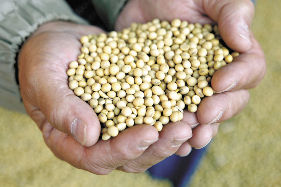 -AP file photo  The Iowa Soybean Association, in acknowledging that the production of grain in general has an impact on the environment, leads in the formatiion of educate farmers to keep the environment safe and informing consumers in efforts farmers are making to do so.