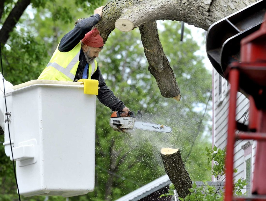 -Messenger photo by Hans Madsen  Will Estlund, owner of Estlund Construction Service, cuts off part of an 80 foot tall hackberry tree that had fallen on two homes and a powerline in the 500 block of South 13th Street in Tuesday night's storm.