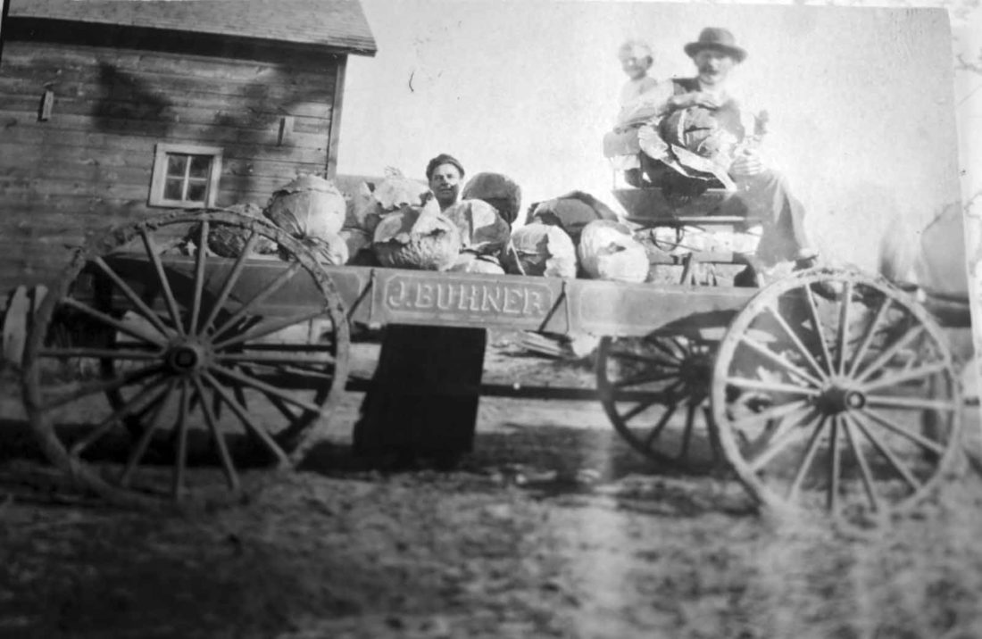 -Submitted photo  This photo shows the wagon owned by John Buhner, the founder of the Eagle Grove Greenhouse. It was taken in Fulda, Minnesota in 1917.