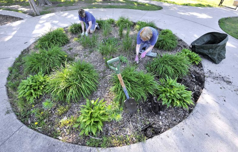 -Messenger photo by Hans Madsen  Pride In Community Appearance volunteers Kay Brand, at left, along with Nancy Spire, both of Fort Dodge, work on removing weeds from a flower bed near the splash pad in Oleson Park during a recent work day.