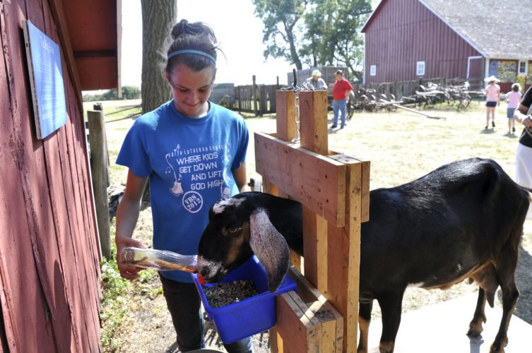 -Messenger file photo by Joe Sutter Allison Devereaux, of Pomeroy, adds some pancake syrup to her goat's grain, to keep the goat happy while it's being milked, at a past Weigert Prairie Fall Fest
