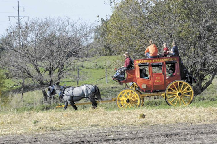 This stagecoach, built in 1893, will return to the Pumpkins and Ponies event Saturday at SpringVale Farm in Humboldt County. People visiting the fall festival will be able to climb aboard for an 1890s style ride across the farm. The vehicle is provided by Mile High Stagecoach Co., owned by D.W. Koss of Lacrosse, Wisconsin.