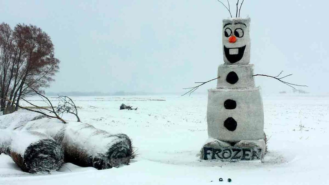 """Jeff Haselhuhn, from Humboldt, along with his wife, Shelly, and their sons, have designed a number of bale art creations featuring characters from popular movies, including Olaf the snowman from the 2013 animated film """"Frozen,"""" produced by Walt Disney Animation Studios."""