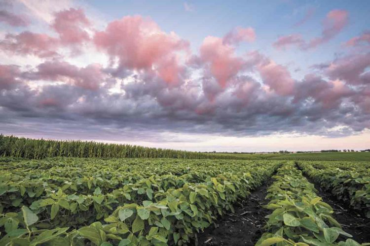 Weather events have been making springs more difficult for producers because of variable weather patterns. The growing season also appears to be getting longer and more rainfall events have been occuring. These issues are making it appear that our growing seasons are changing.