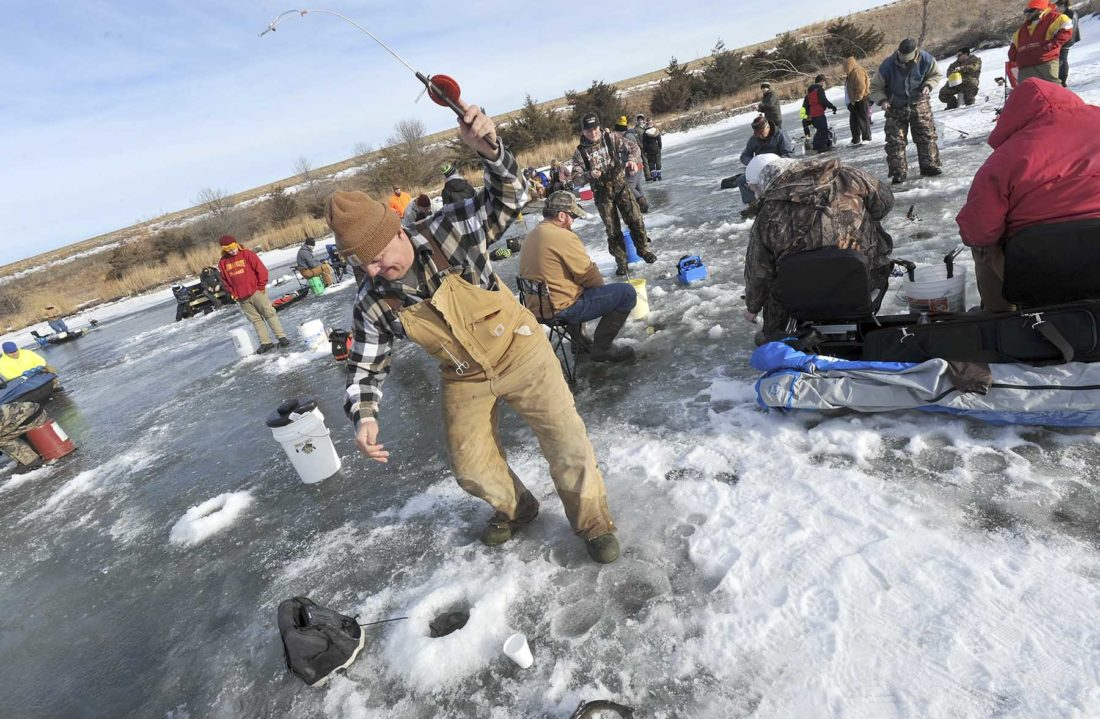 -Messenger photo by Hans Madsen  Kevin Demery, of Duncombe, pulls a trout of his ice fishing hole on Moorland Pond Saturday morning shortly after the Iowa DNR stocked the small lake with about 1,400 fish.