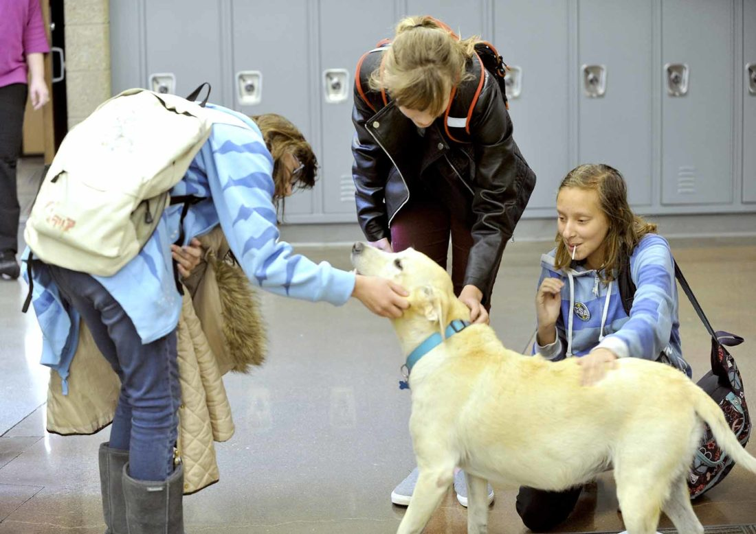 3 students pet dog