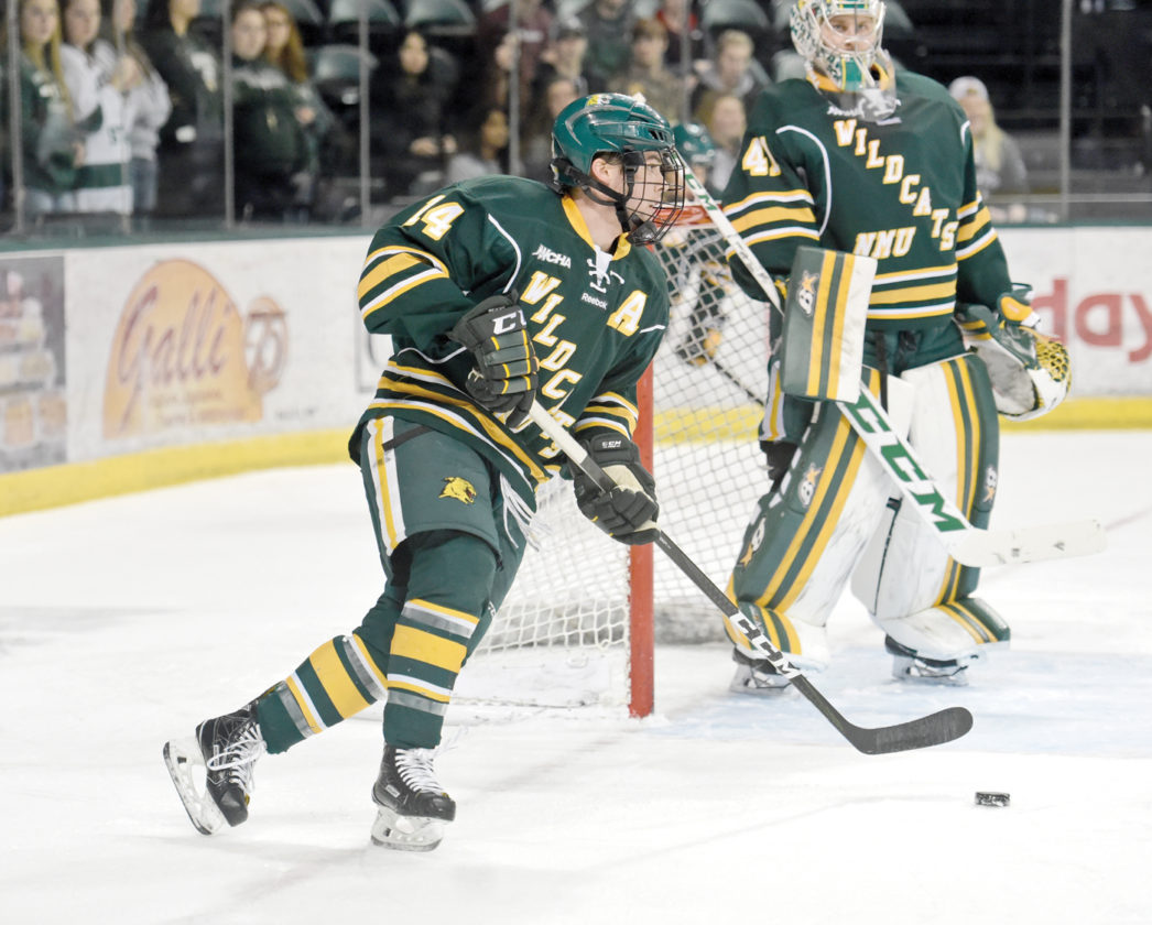Image result for northern michigan hockey 2018