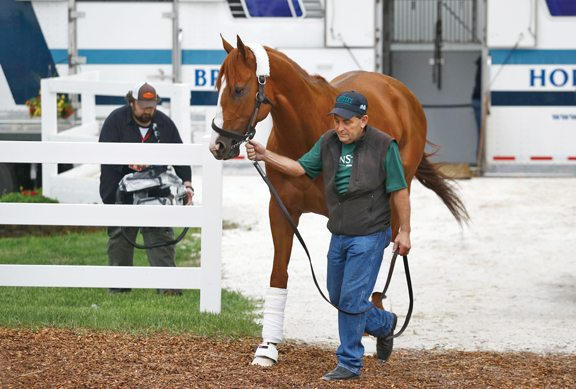 Baffert enjoys having favorite Justify in Preakness