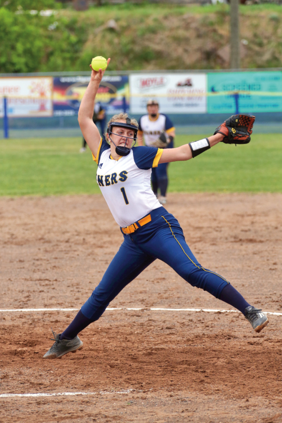 negaunee s nelson ishpeming s bleau named m pc co pitchers of the