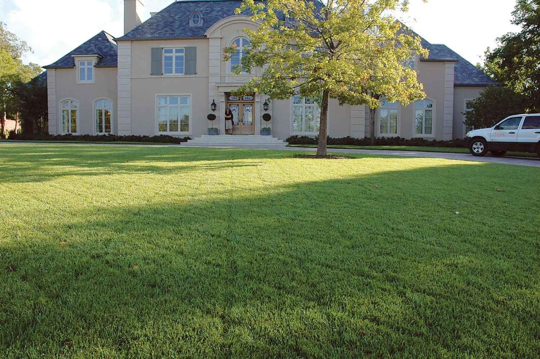 Submitted Photo  The best defense against weeds is a thick, healthy lawn. Photo from Melinda Myers, LLC.