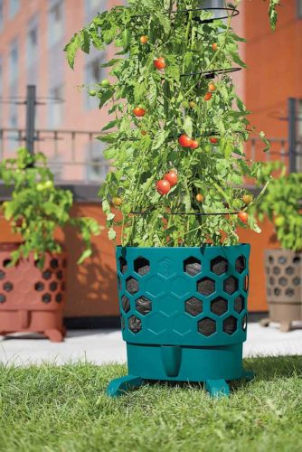Submitted Photo  Growing tomatoes in container gardens enables gardeners to jump start the growing season. Photo from Gardener's Supply Company.