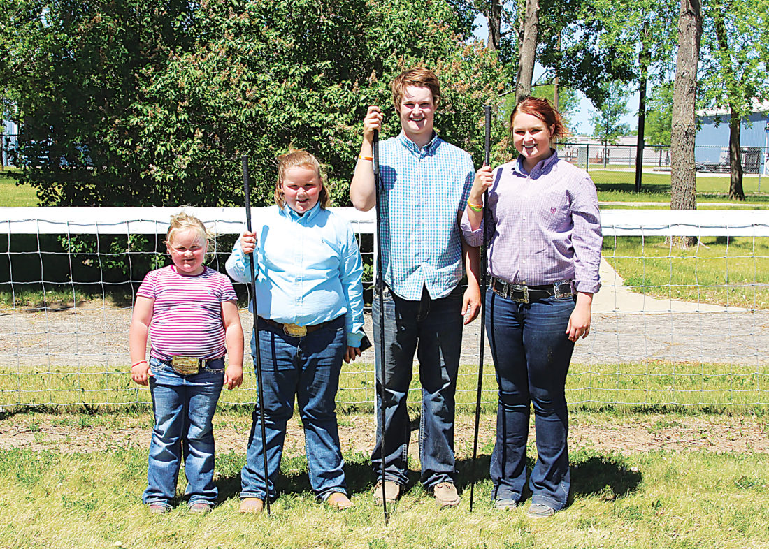 Submitted Photo Winning top honors in their division of showmanship were, from the left, Cally Hansen, peewee champion, and Molly Hanson, junior champion, both Carrington; Peyton Sundsbak, intermediate champion, and Madison Sundsbak, senior champion, both Des Lacs. Photos courtesy of Rod Geppert, American Angus Association.