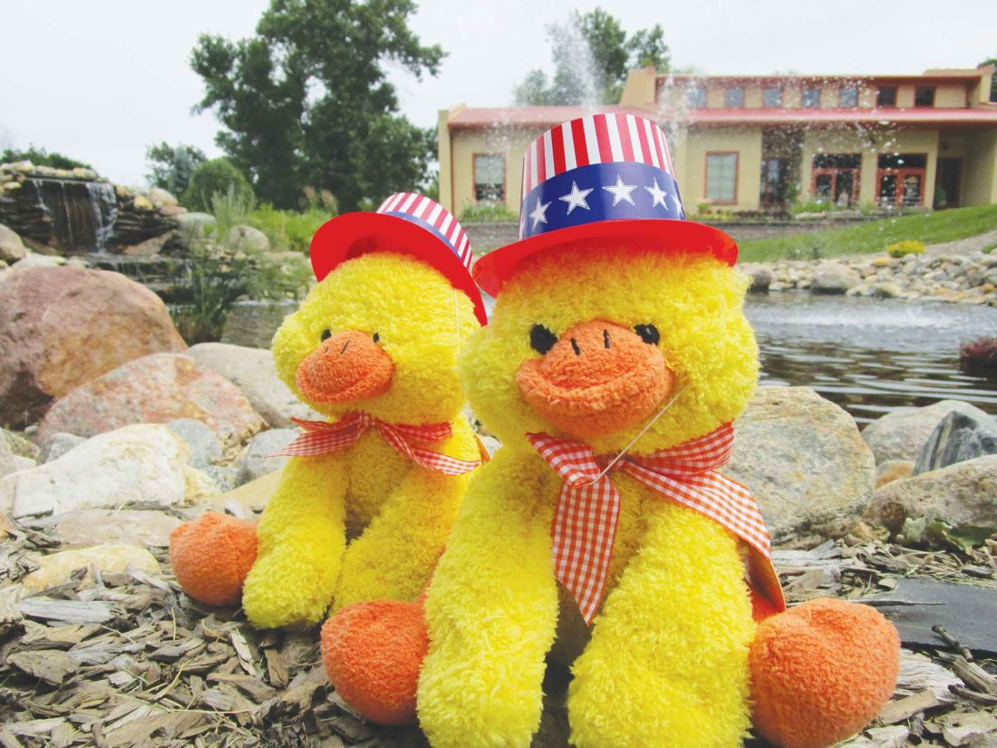 """After the Fourth of July Festival at Roosevelt Park, visitors can watch or compete in the """"Rubber Duck River Race,"""" a popular event with proceeds supporting local non-profit organizations.  Allan Blanks/MDN"""