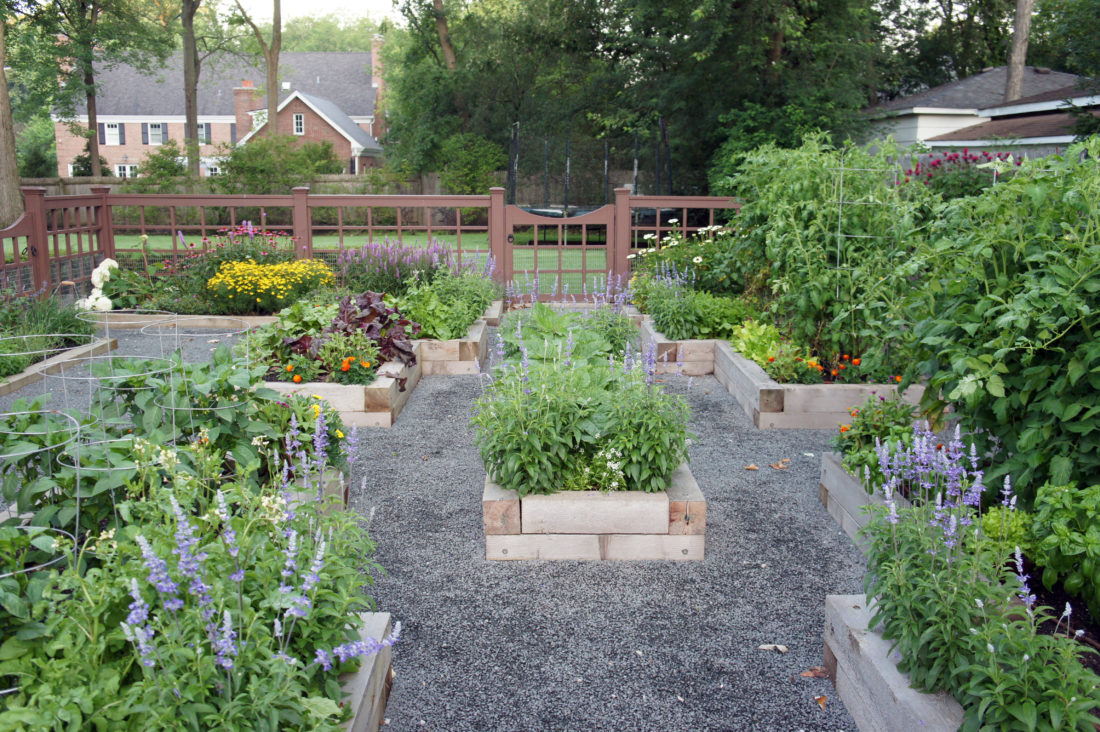 farmers for hire turn backyards into vegetable patches news
