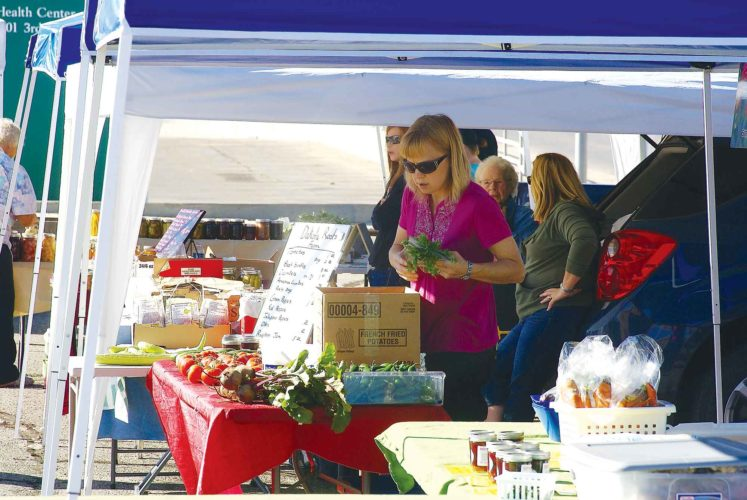 Submited Photo  North Prairie Farmers Market president AriAnna Wingenbach, plans to be present during the return of the North Prairie Farmers Market, Saturday from 11 a.m.- 2 p.m. at the corner of 3rd Avenue SW and 1st Street SW.