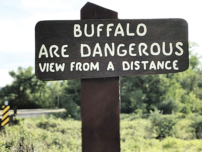 Submitted Photo Michael Turk took this photo of a sign warning visitors to be careful for the bison or commonly known as buffalo, in the North Unit of Theodore Roosevelt National Park. Later he was attacked by a bison and injured while on a trail in the park.