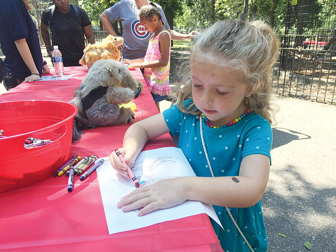 "Submitted Photo Three-year-old Mayzii Peters colors a picture during Conservation Day at Roosevelt Park Zoo in Minot on Saturday. Themed ""All Aboard the Conservation Express,"" there were several stations with an activity, craft or game featuring various animals. Conservation participants voted for one of 10 conservation efforts which will receive all the money raised on Saturday. ""We raised $455.75 and it was the red pandas who got the most votes so we'll be sending the money raised to the Red Panda Network,"" said Jennifer Kleen, Minot Zoo Crew executive director."