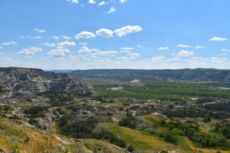 Garrick Hodge/MDN Pictured is an overview of Theodore Roosevelt National Park.