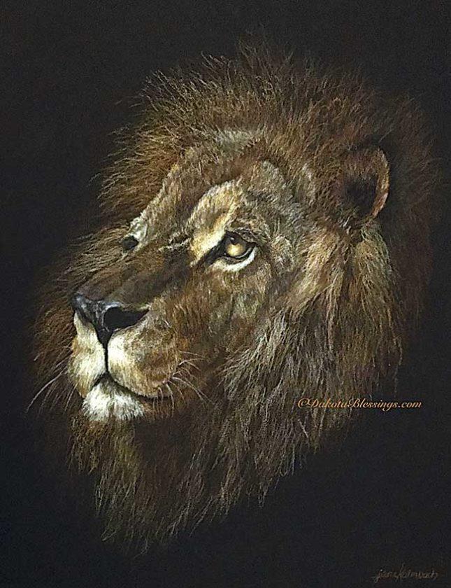 Lion,-color-pencil