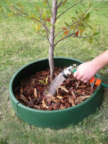 The GreenWell water saver contains and concentrates the water where it is needed during a tree's critical root establishment phase.  Submitted Photo