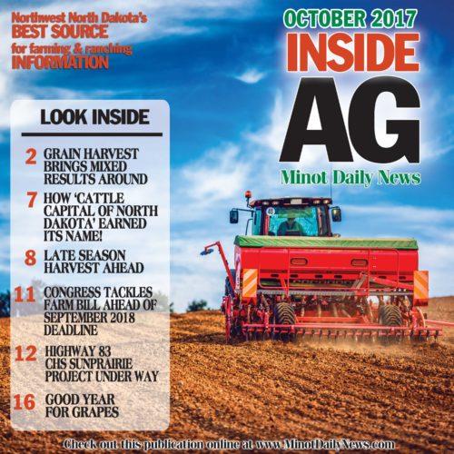 IAG-cover