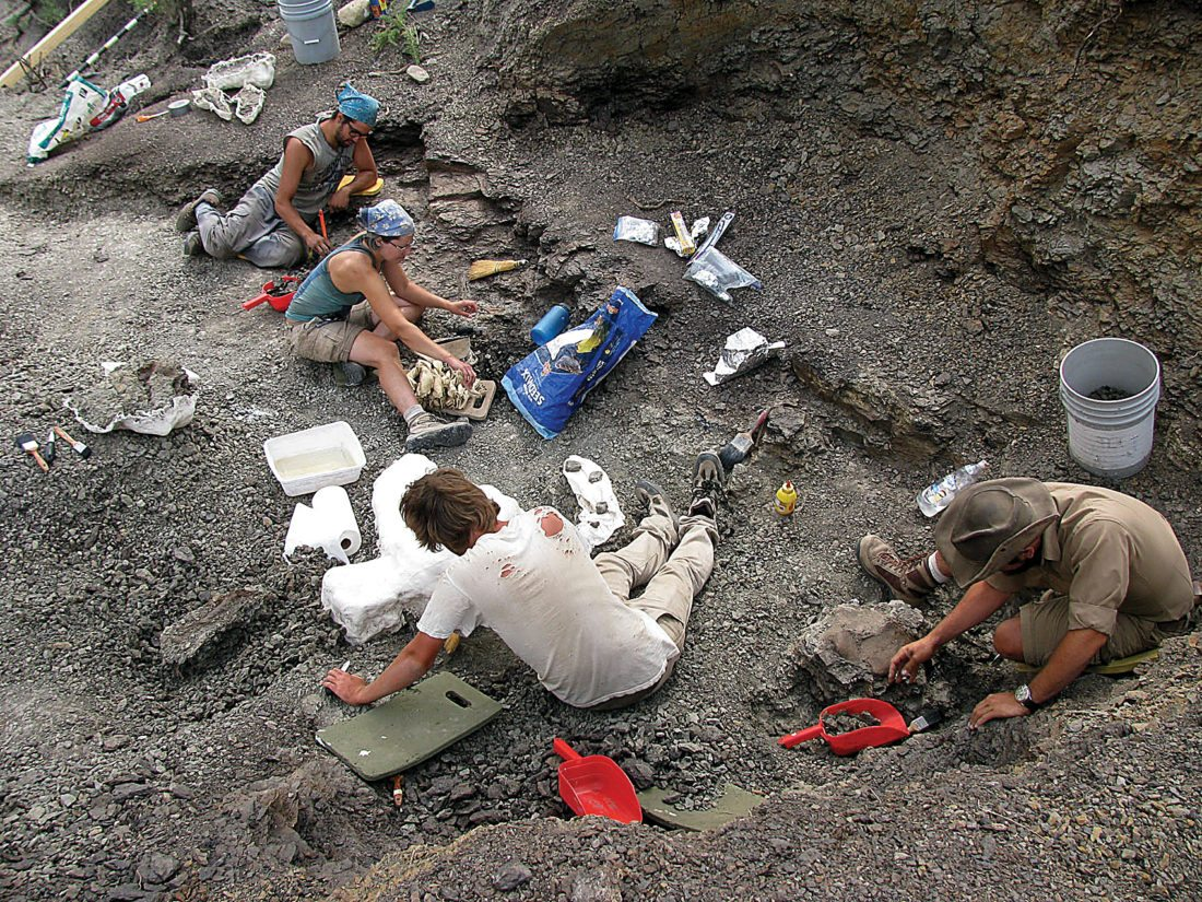 Submitted Photo Participants are shown at the site in northern Montana where the nodosaur was collected.