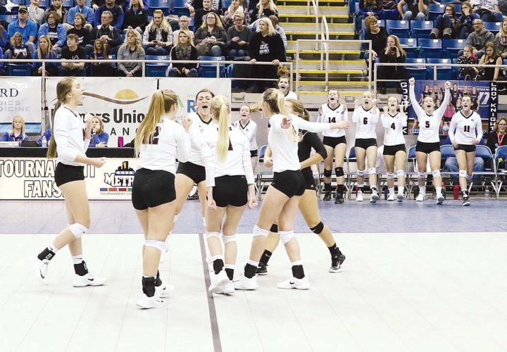 Al Christianson/Special to MDN The  LaMoure-Litchville/Marion volleyball team celebrates after scoring the final point against Our Redeemer's in the state semifinals.