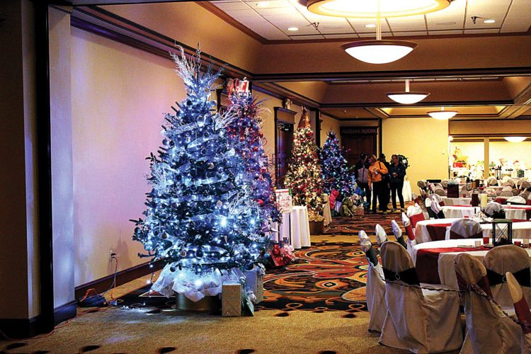 Ashton Gerard/MDN The Festival of Trees took place Saturday at the Holiday Inn Riverside in Minot. New this year was a public tree viewing from 10 a.m. to 1 p.m. to showcase the trees, wreaths and centerpieces available for auction. Also included was a raffle to win prizes such as a Medora vacation package. The Festival of Trees benefited Dakota Hope Clinic, a Christian-based ministry that supports women and men with unplanned pregnancy.