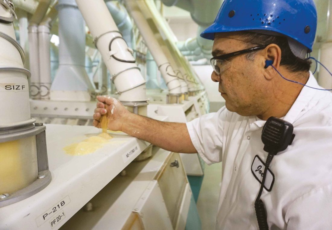 Minot Milling employee Joe Reza sets out samples of ground wheat as equipment mills it into flour.  Jill Schramm/MDN