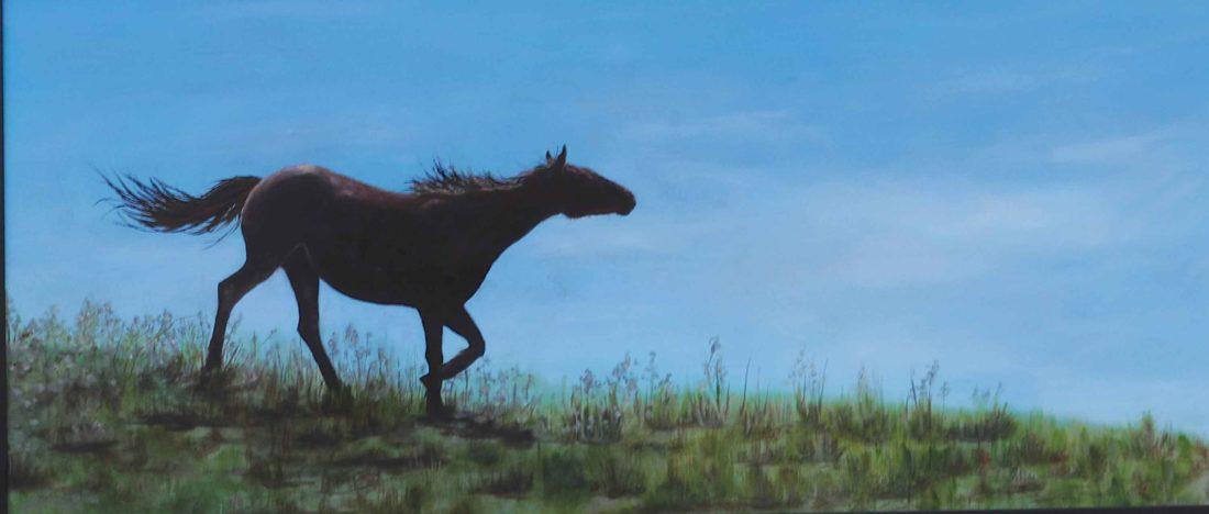 happyhorse---Copy