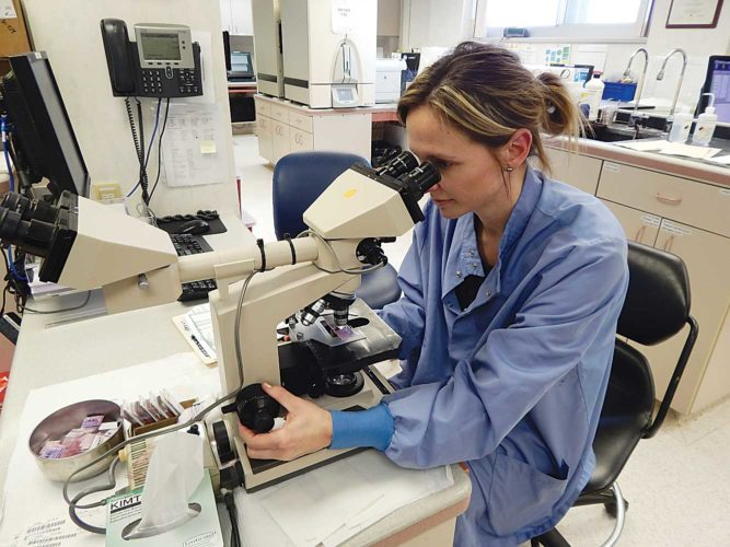 Submitted Photo Chandra Flammang, a medical technologist in Trinity Hospital Laboratory's Microbiology Section in Minot, examines a specimen using a high resolution microscope. Trinity Health, including Trinity Hospital, provides regional health care to people of North Dakota and eastern Montana. Some area rural hospitals are designated critical access hospitals