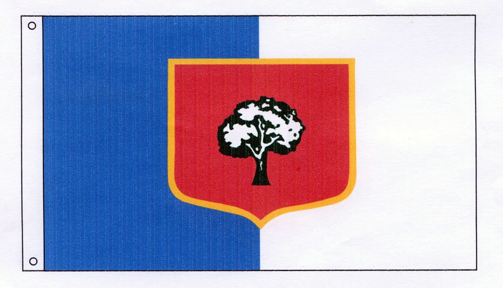 Many people may not know it, but Lisbon has its own flag.