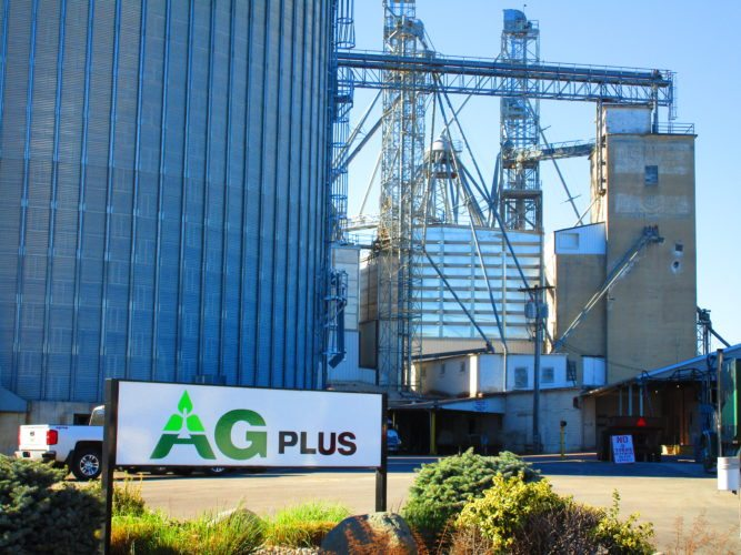 Ag Plus plans a new $10 million feed facility in Woodburn. (Courtesy photo)