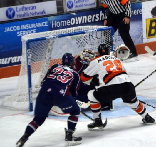 Louick Marcotte scores his first goal as a Komet, flipping the puck over the shoulder of the Tulsa goaltender. (By Blake Sebring of News-Sentinel.com)