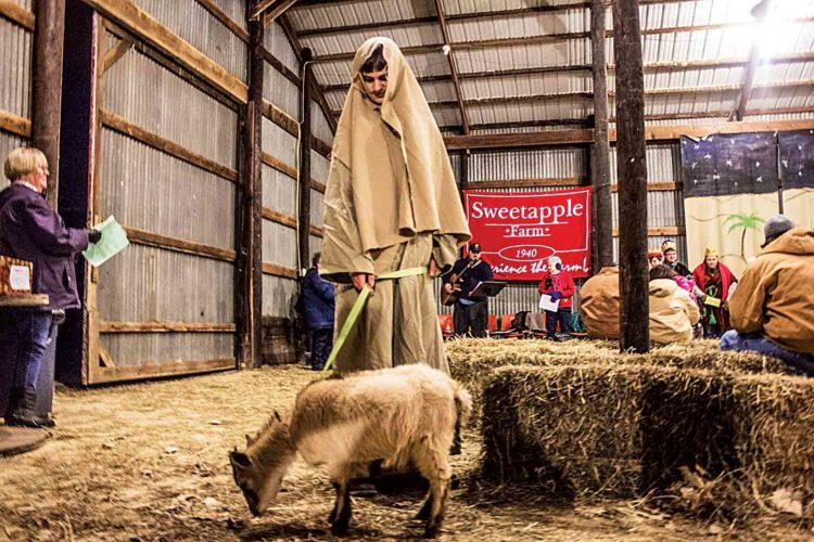 Photo by Janelle Patterson Caleb Anderson, 13, of Fleming, leads a goat through the barn of Sweetapple Farm in Vincent during the live nativity show Thursday.