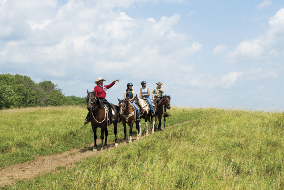 Photos provided by The Wilds A horseback safari is one of the many safaris patrons can take.